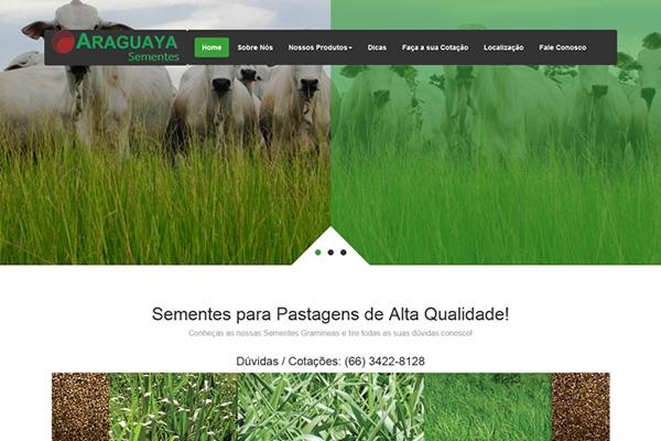 sites-profissionais-programador-digital-araguaya-sementes2BBD0D7E-E5C4-CF50-5313-D84A91978C49.jpg